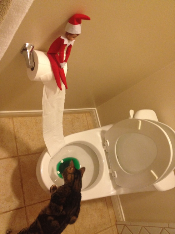 Elf on the shelf the fairly good mother for Elf on the shelf pooping on cookies