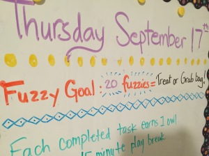 Each week I set a goal & when The Boy gets 20 fuzzies, he can pick from the grab bag!